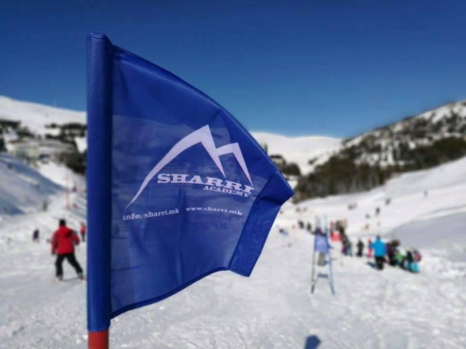 Ski Course for Professionals